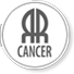 Cancer Research Network (RRCancer)